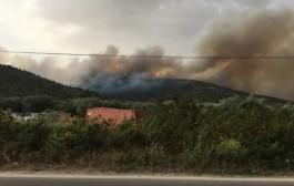 Ανεξέλεγκτη η φωτιά στη Θάσο, απειλείται το χωριό Θεολόγος