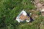11 φόλες και δύο ζώα νεκρά από δηλητηρίαση εντοπίστηκαν στη Νυμφαία