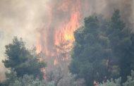 Πυρκαγιά σε δύσβατη περιοχή της Σαμοθράκης