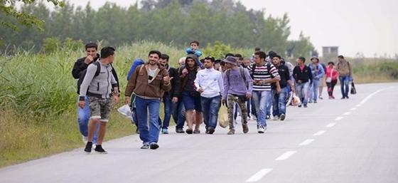 Μετανάστες επιτέθηκαν σε οδηγό στον Έβρο στήνοντας «ενέδρα»!