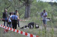Έβρος: Νεκρές 28 αγελάδες μετά από κατάποση νερού σε κανάλι του ποταμού!