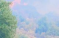 Μεγάλη πυρκαγιά στην Αισύμη του Έβρου
