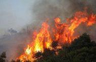 Πυροσβεστική: Ημεδαπός ο υπεύθυνος για την φωτιά που έκαψε 2.000 στρέμματα στην Αισύμη του Έβρου!