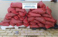 Αλεξανδρούπολη: Κατάσχεση και συλλήψεις για λαθρεμπορία οστράκων ακατάλληλων για ανθρώπινη κατανάλωση