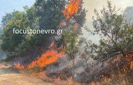 Νέα πυρκαγιά στον Δήμο Σουφλίου - Η κατάσταση μέχρι αυτή την ώρα