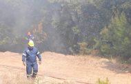 Πυρκαγιά σε δασική έκταση στη Νυμφαία Κομοτηνής – Εξετάζεται η εκκένωση οικισμών